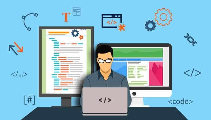 Web development, Web developer