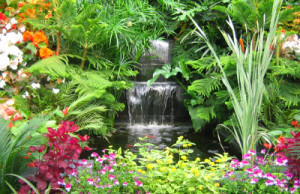 tropical_garden_design2