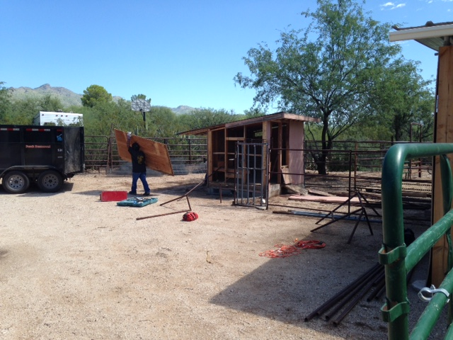Tucson shed removal in progress