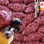 India Bans Onion Exports As Prices Treble in a Month After Rainfall Hits Crops