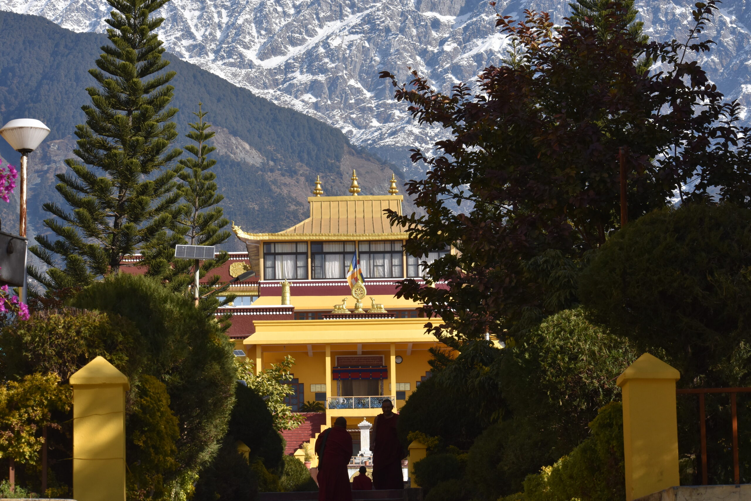All about Dharamshala