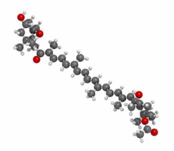 DYG – 400 – Dyglomera