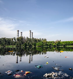 garbage-on-body-of-water