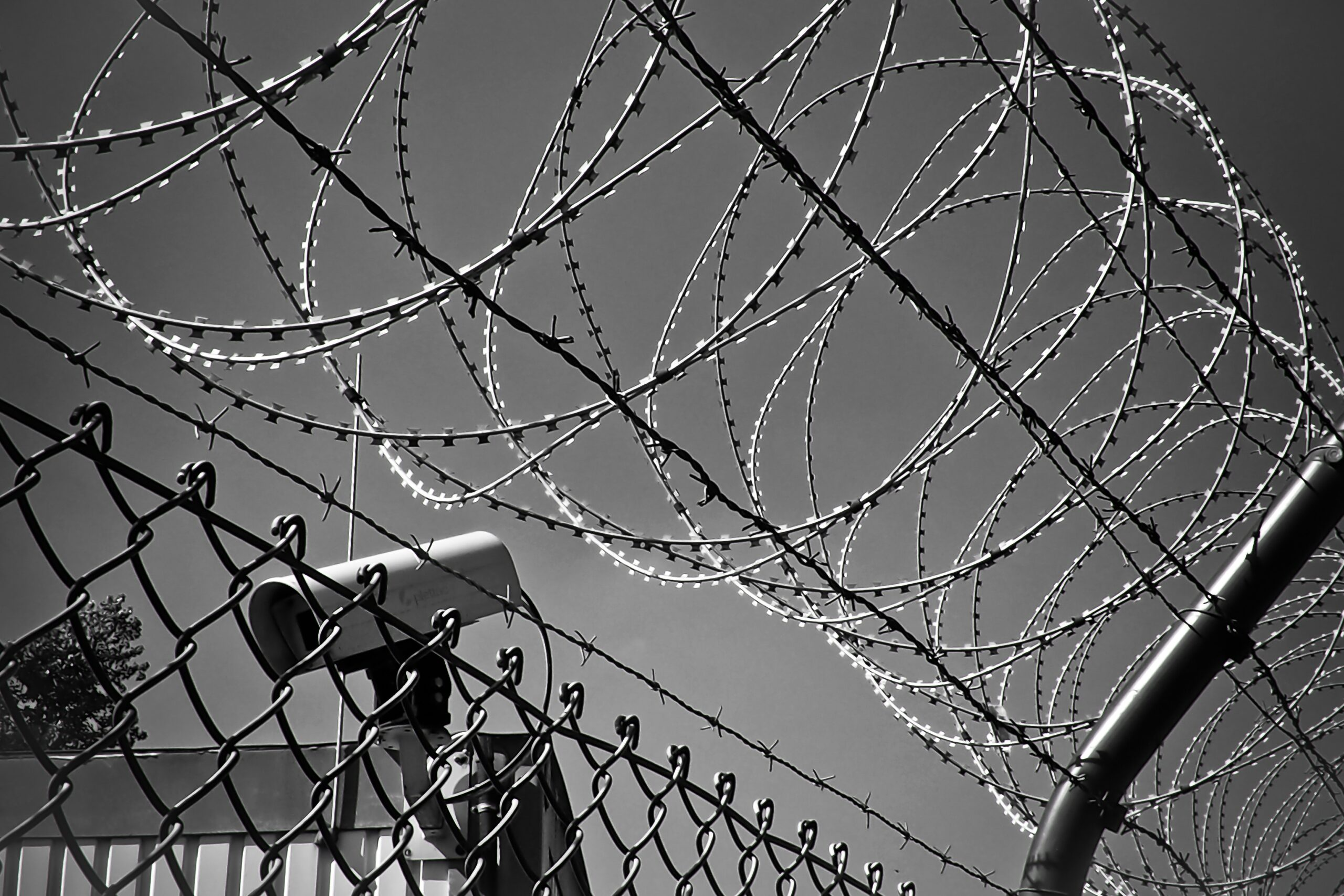 abstract-barbed-wire-black-white-black-and-white-274886