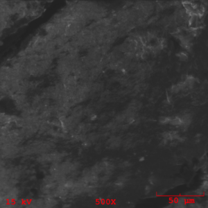 Figure 15– SEM photomicrograph obtained from the mating rubber back surface at 500X magnification