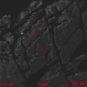 Figure 16 – SEM photomicrograph obtained from the mating rubber back surface at 100X magnification detailing the EDS locations 1 through 2