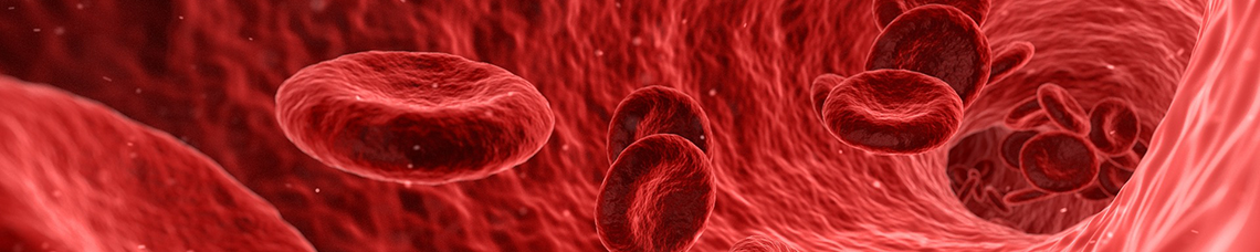 Red_Blood_Cell
