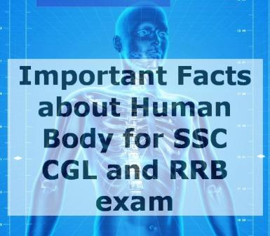 Facts of Human Body