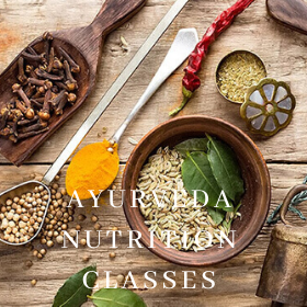 AUYRVEDA NUTRITION CLASSES