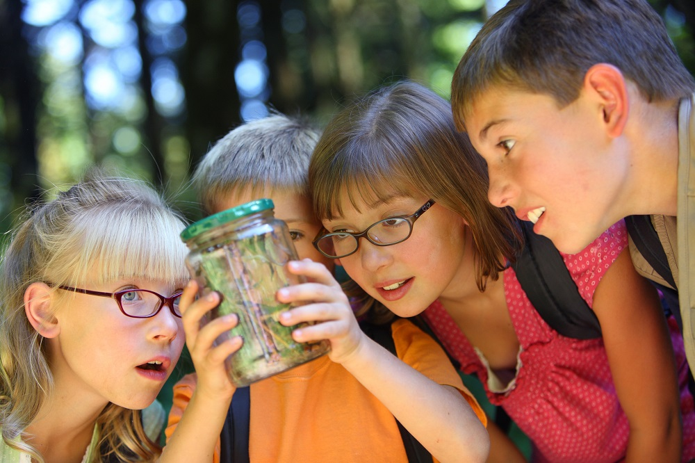 Affordable Summer Activities for Kids