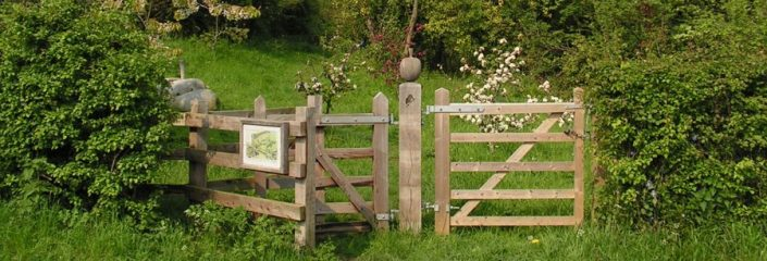 Sandown Community Orchard