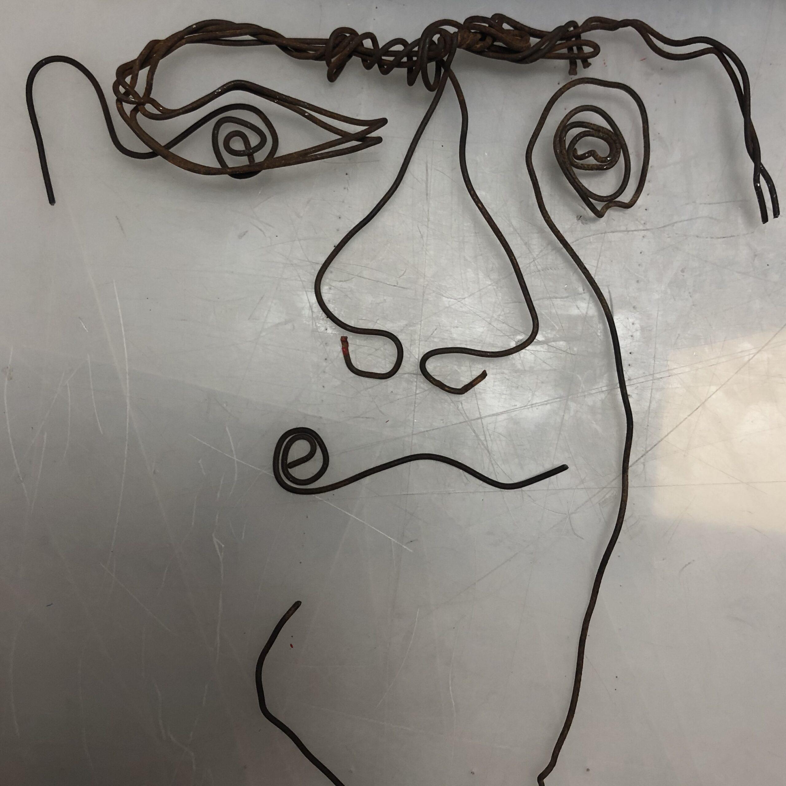 Found-wire-1