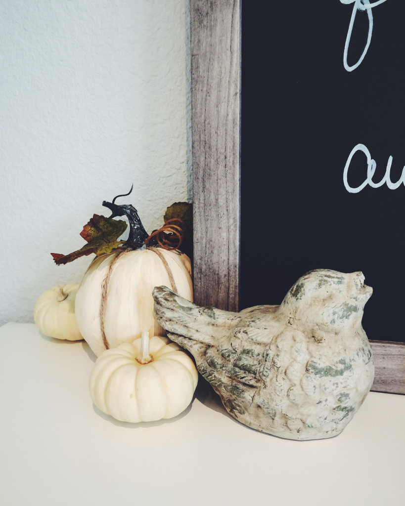Grey stone bird and white mini pumpkins