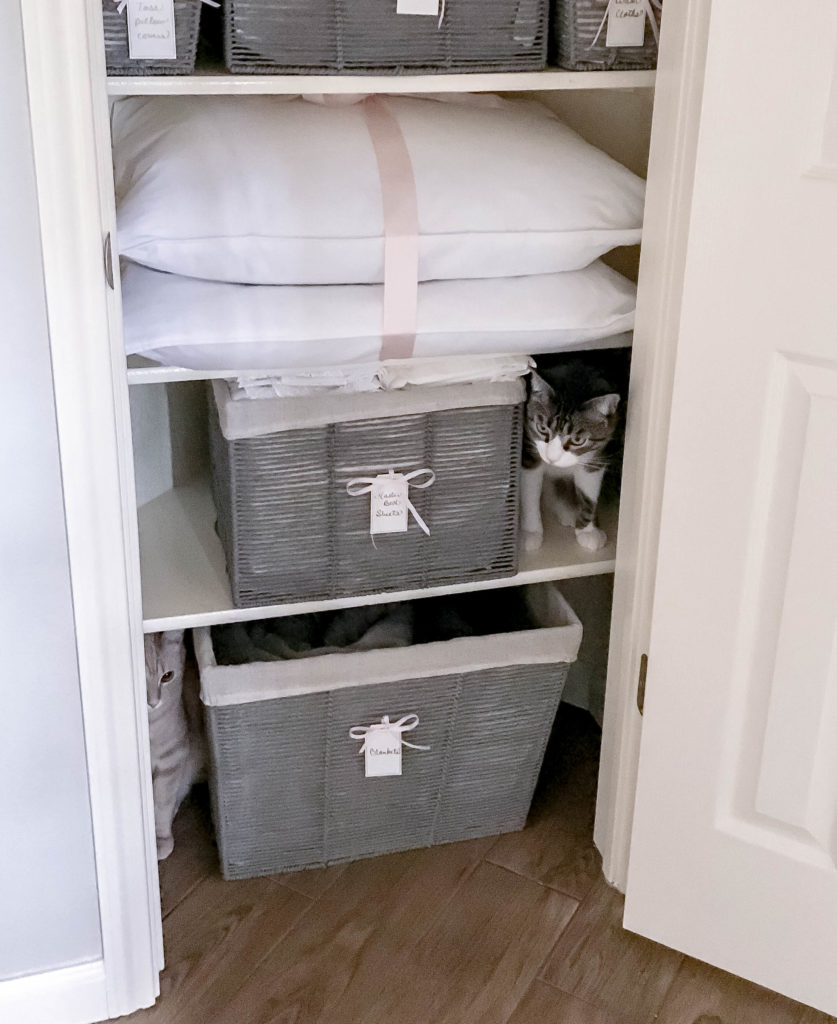 inside view of organized linen closet with two cats hiding in it