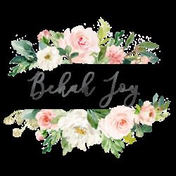 Bekah Joy Blog
