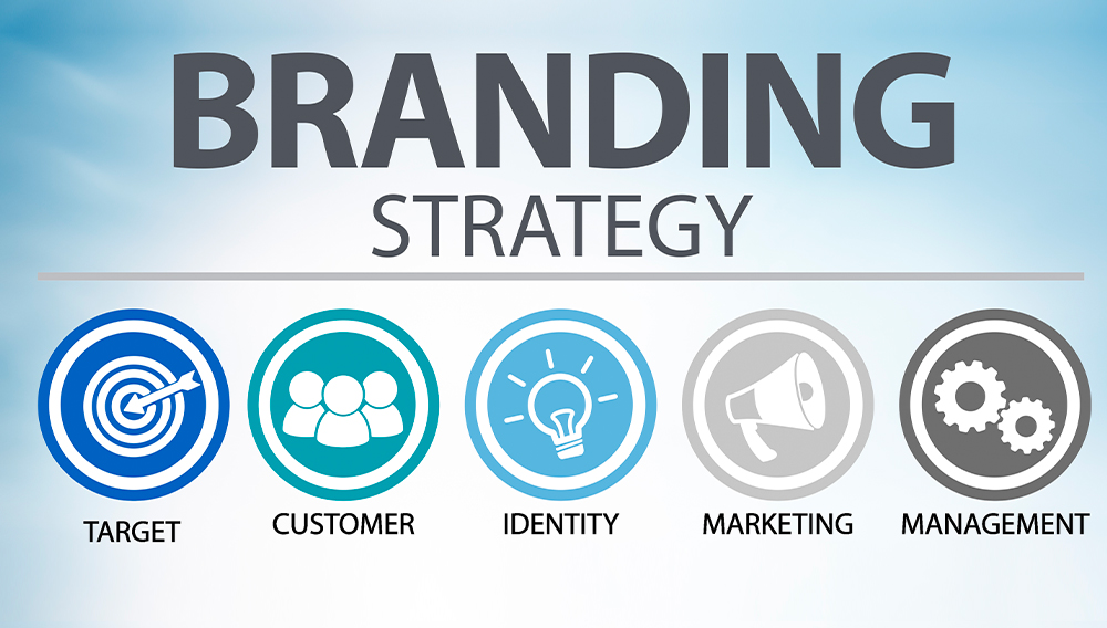 learn about branding identity