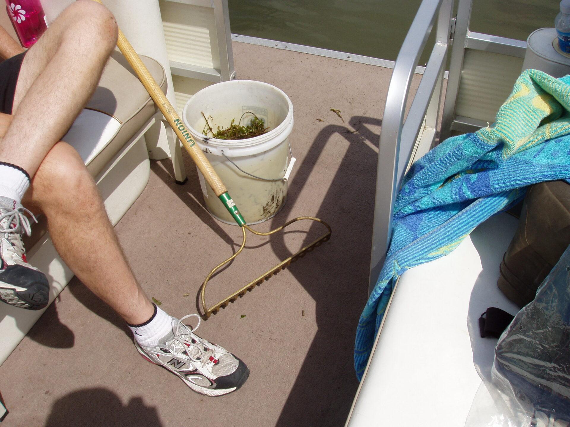 Removing Curly-Leaf pondweed