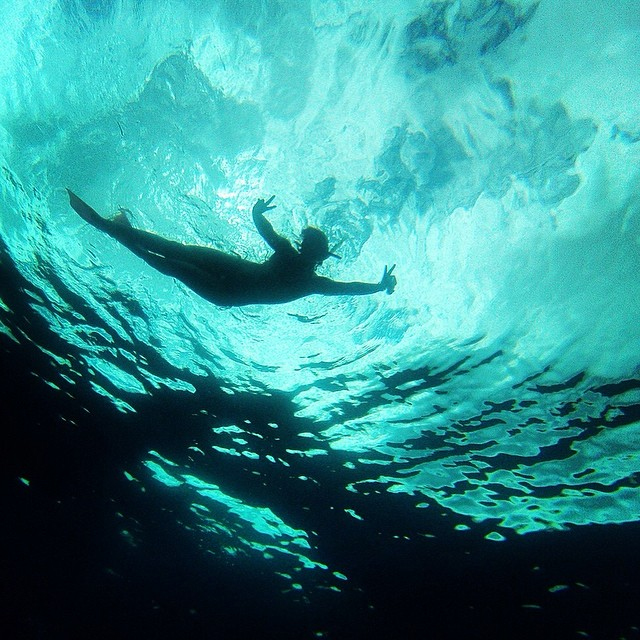 Snorkeller above. Photo: Simon Ceglinski
