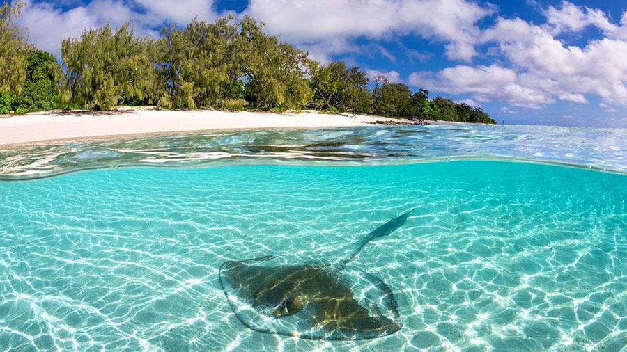 Heron Island. Credit: Tourism & Events Queensland