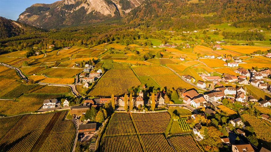 Credit: Winery Schloss Salanegg