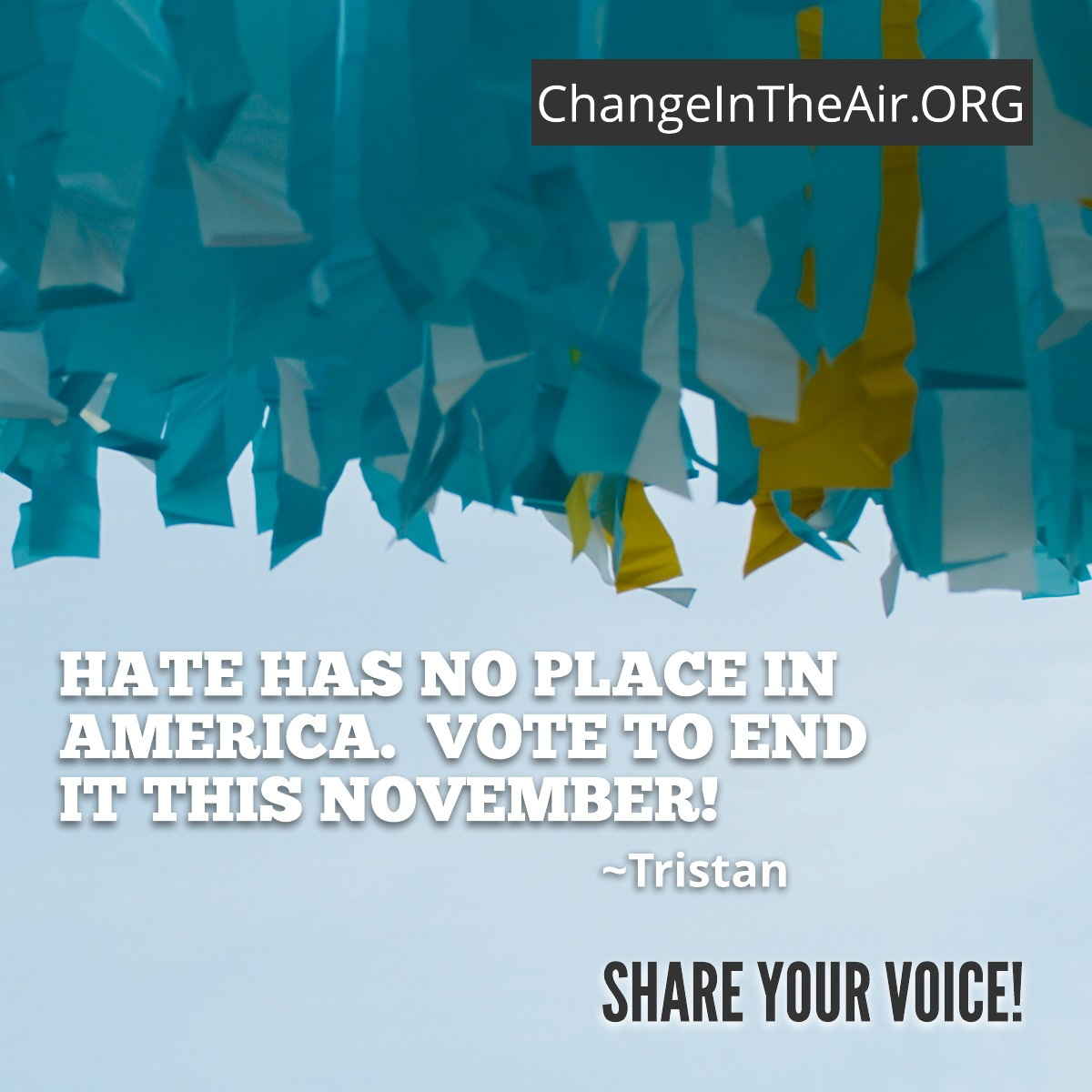 Change in the Air quote. Hate has not place in America. Vote to end it this November.