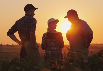 Farmer with team in field at sunset