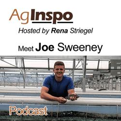 Joe Sweeney