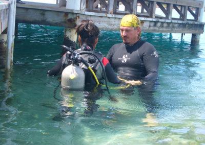 Diving 1