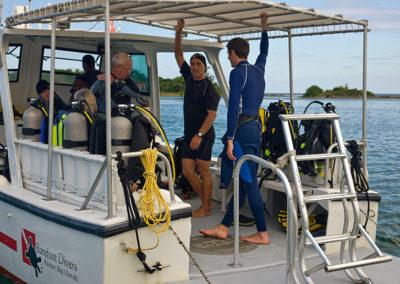 Diving 11
