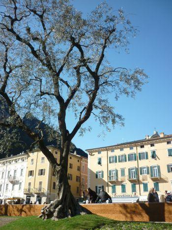 italiainpiega-pieghe-meravigliose-itinerari-moto-nord-italia-lago di garda-riva del garda 2