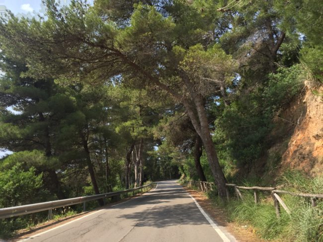 italiainpiega-pieghe meravigliose-itinerari moto centro italia-argentario 1