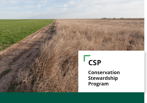 USDA Offers Conservation Stewardship Program Participants Renewal Options for Contracts Set to Close