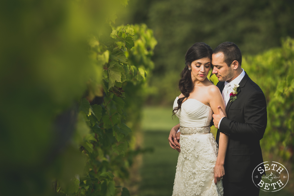 Vineyard Destination Wedding - Weddings at Gervasi Vineyard, Canton OH