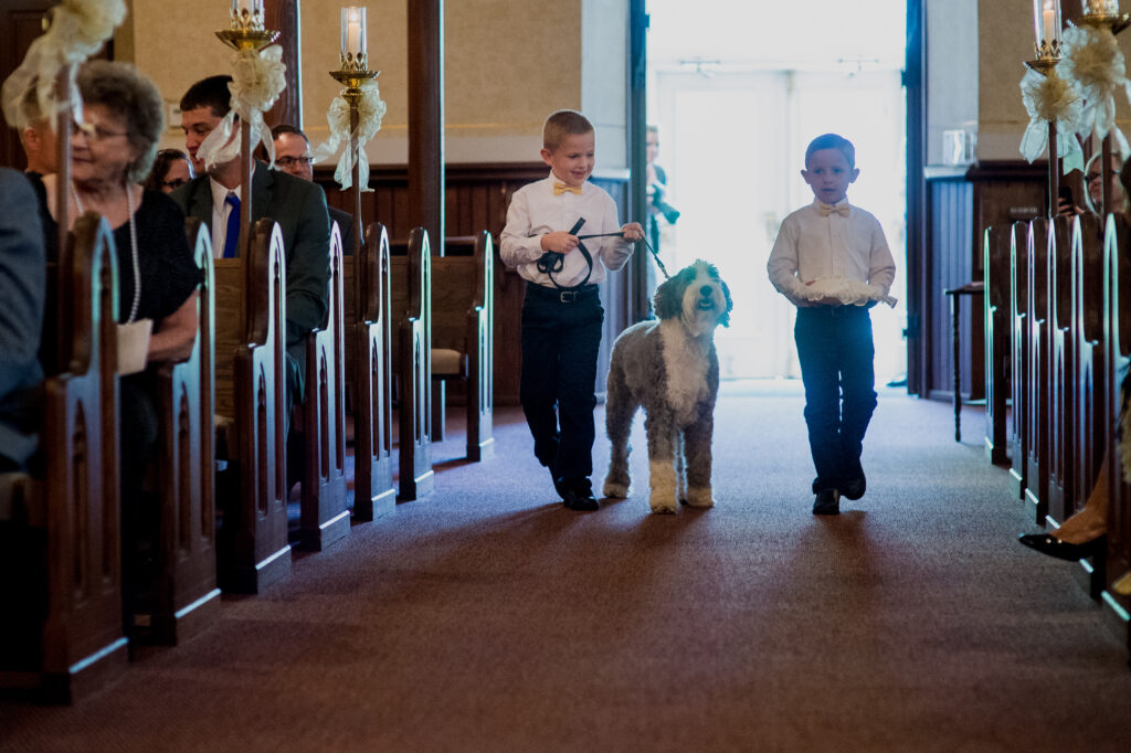 10 Tips To Include Your Pets In Your Wedding and Engagement Pictures!