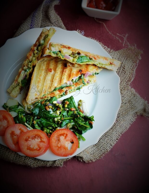 Grilled Sprouts Spinach Kale Sandwich