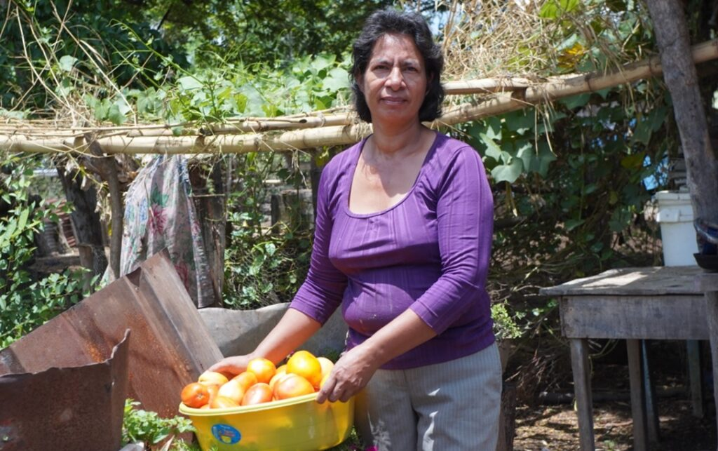 Feeding the people in times of Pandemic: The Food Sovereignty Approach in Nicaragua