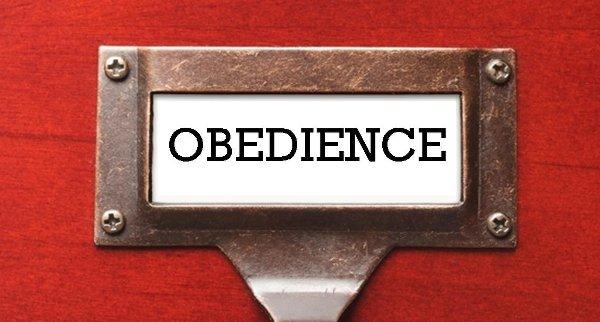 obedienceweb
