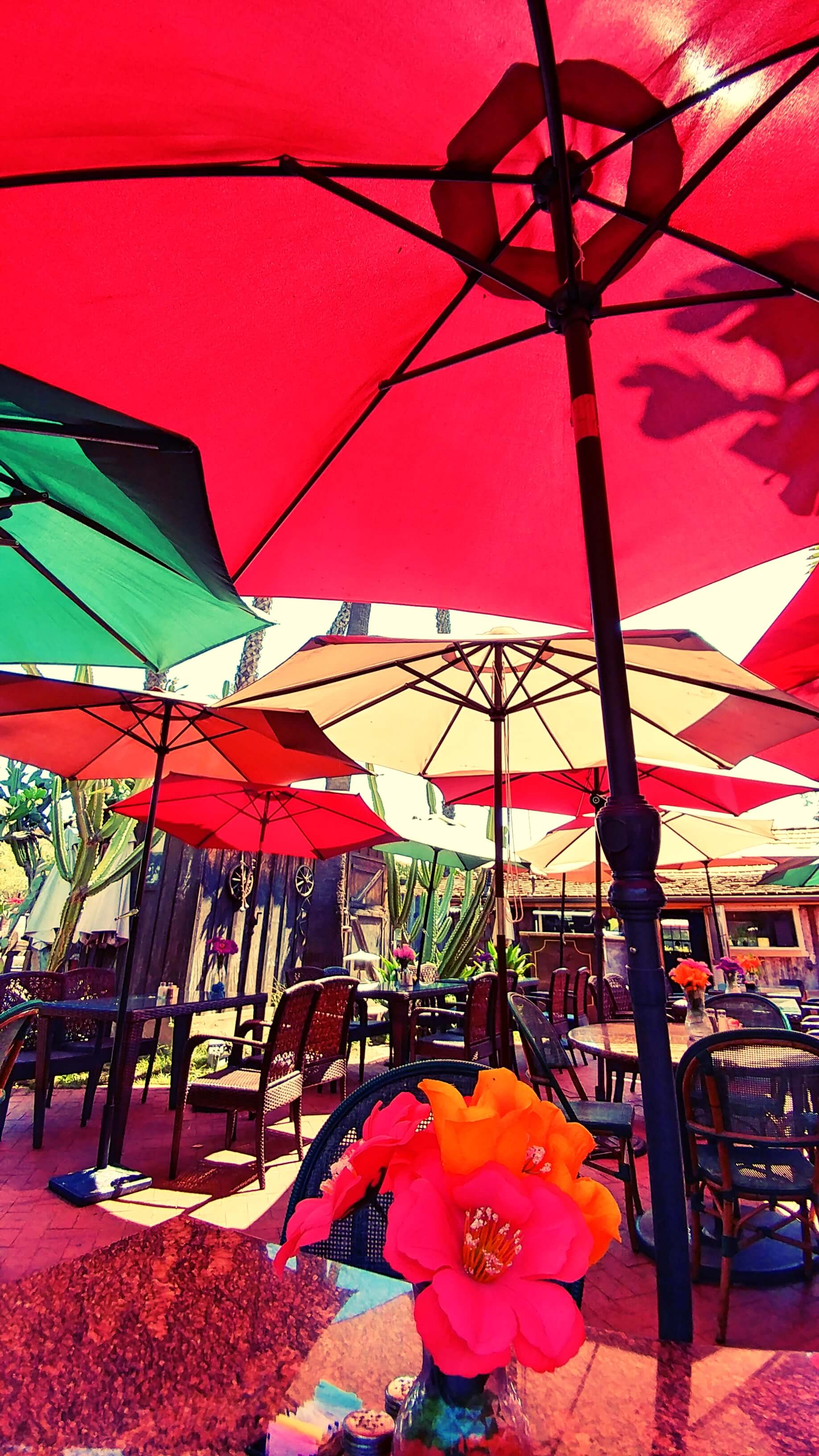 Outdoor seating vibes, Hummingbird House Cafe, Los Rios Street, San Juan Capistrano