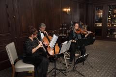 PISP-Galleries-Musicians-Images-4