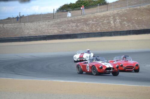 Monterey Cobra Reunion 015