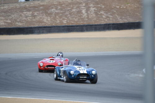 Monterey Cobra Reunion 020