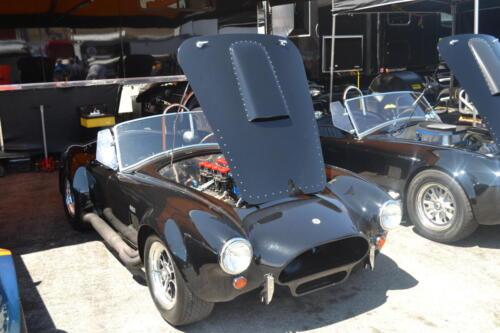 Monterey Cobra Reunion 518