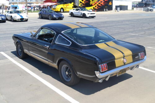 Monterey Cobra Reunion 553