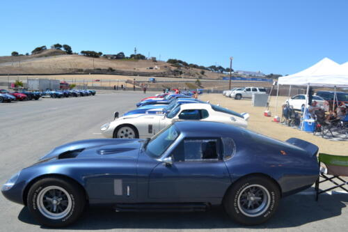 Monterey Cobra Reunion 556