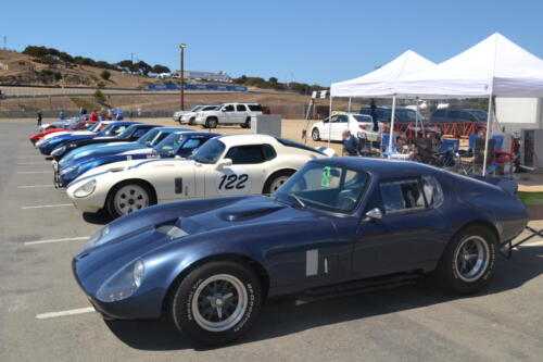 Monterey Cobra Reunion 557