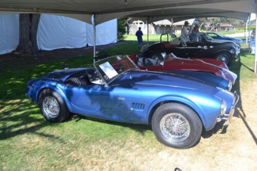 Monterey Cobra Reunion 572