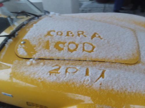 Cobra 1000 1