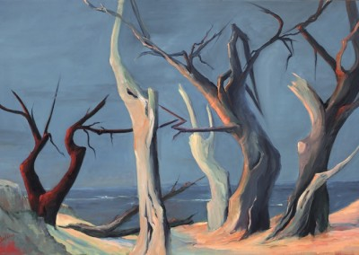 Ghost Trees of Pebble Beach