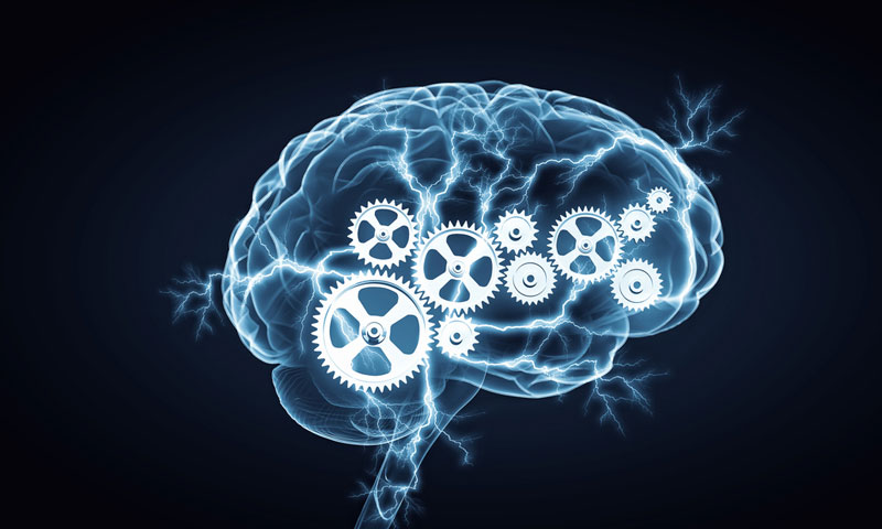 illustration of brain with gears turning