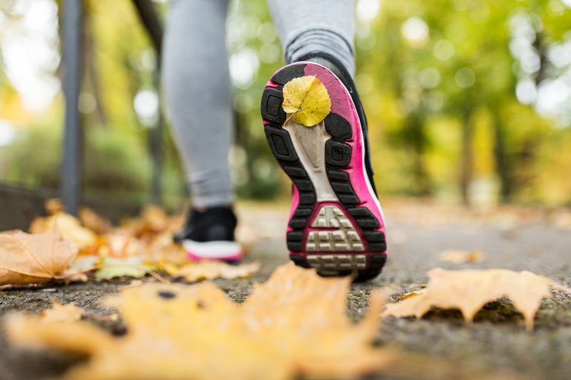 running shoes on leaves